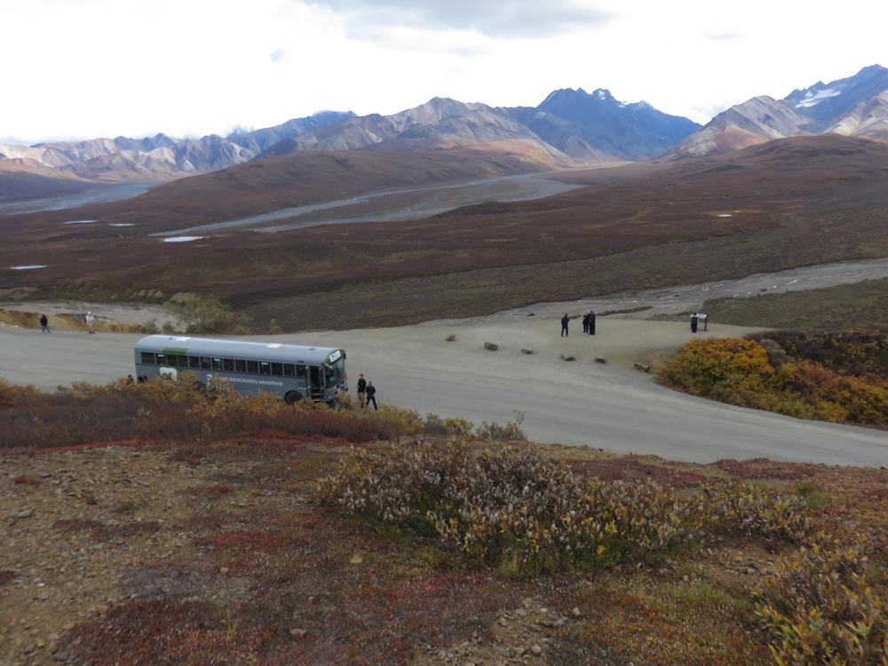 Denali National Park with Custom Touring